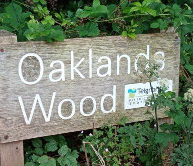 Oaklands Wood